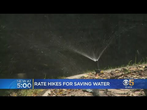 San Jose Water Customers Face Surcharge For Conserving Too Much Water