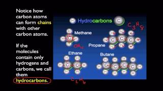 Unit 2- Monomers vs Polymers