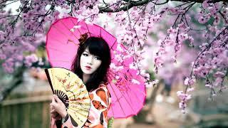 Contemporary Japanese Music | Geisha | Japanese Flute (Shakuhachi) & Shamisen