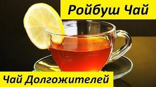 Ройбуш Чай | очищающий чай для похудения пуэр