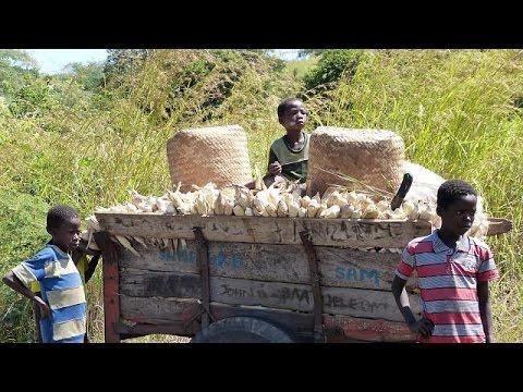 Malawi cracks down on food smugglers seeking more profit