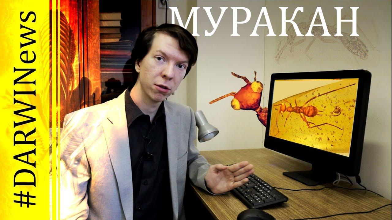 МУРАКАН - чужой мелового периода! Ярослав Попов #DARWINews