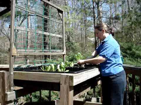 Gardening in a waist high raised bed garden youtube - Waist high raised garden bed plans ...