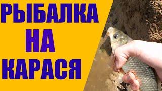 ОТКРЫТИЕ РЫБОЛОВНОГО СЕЗОНА Рыбалка на карася