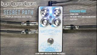 Secret Path Reverb Pedal Demo | Black Country Customs | Laney Amps