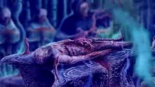 AVULSED - Red Viscera Serology [Official Video-lyric] (2015)