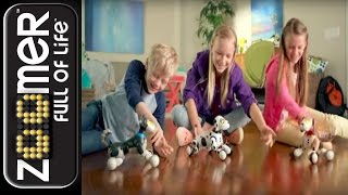 zoomer new zoomer 2 0 and friends tv commercial