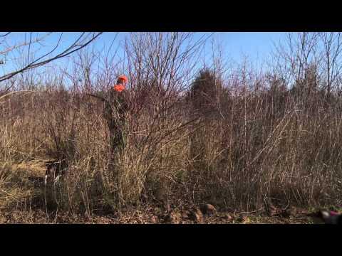 Arkansas River Valley Rabbit Hunt