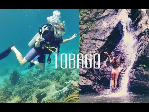 2 MONTHS in 2 MINUTES | Tobago