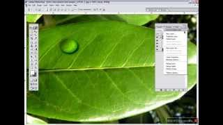 Adobe Photoshop Tutorial - How to Create Water Drop Effect