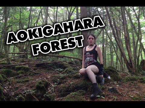 Shiverz In Japan: Aokigahara