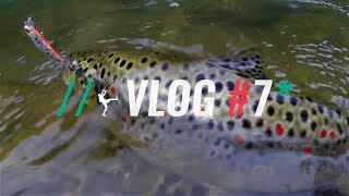 Maelstrom Fishing Blog #7: Pastrmka u rano prolece
