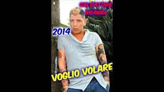 SALVATORE BRANDI MA IO AMO LEI (VOGLIO VOLARE 2014)
