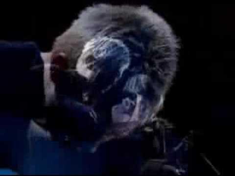 Radiohead - You (subtitulada)