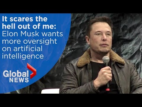 Elon Musk calls lack of A.I. oversight \'insane,\' says it\'s more dangerous than \'nukes\'