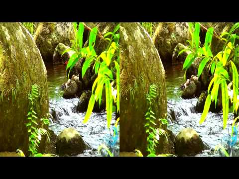 3d 3d video 3ds 3d movie 3d in 3 minutes 3d video glasses needed Hawaii 3d videos fragman