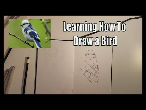 Learning how to draw - in 3 simple steps - following a tutorial on skillshare thumbnail