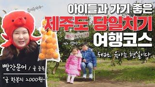 #제주도항공권 1000%활용 아이들과 #당일치기 #제주…