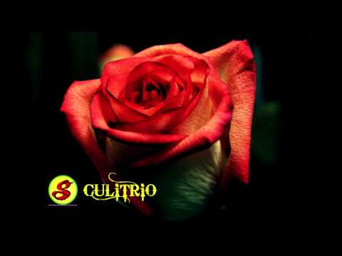 Grupo Mandingo Puras Mentiras Grupos Romanticos Exitos Gruperas AUDIO HD Only Mp3