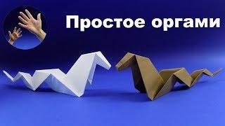 Как сделать из бумаги змею. Оригами из бумаги змея