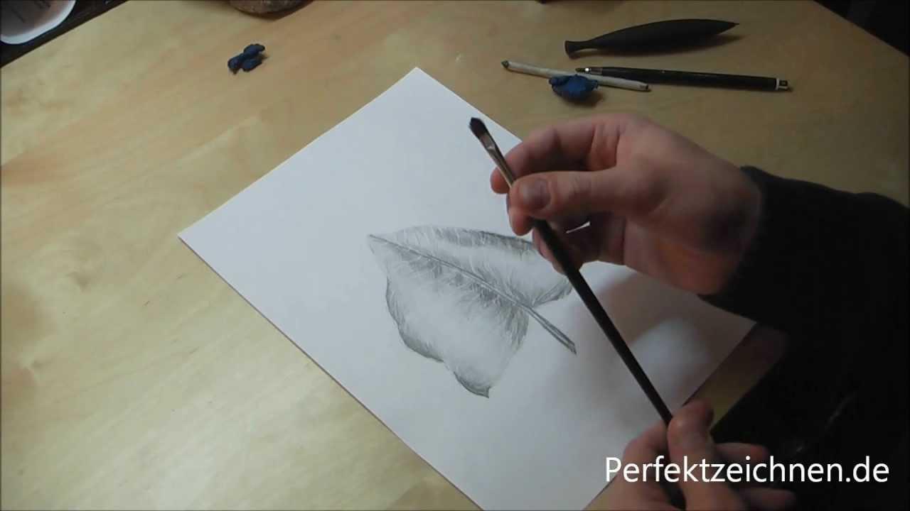 Zeichnen Lernen Online Zeichenlektion Blatt Zeichnen Lernen