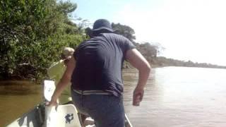 Baixar Dourada - Luiz Alves - Araguaia - maio/2011