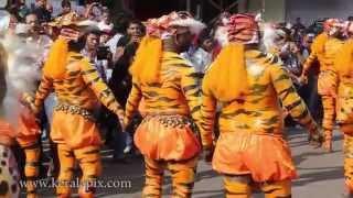 Pulikali 2014, Thrissur keralapix