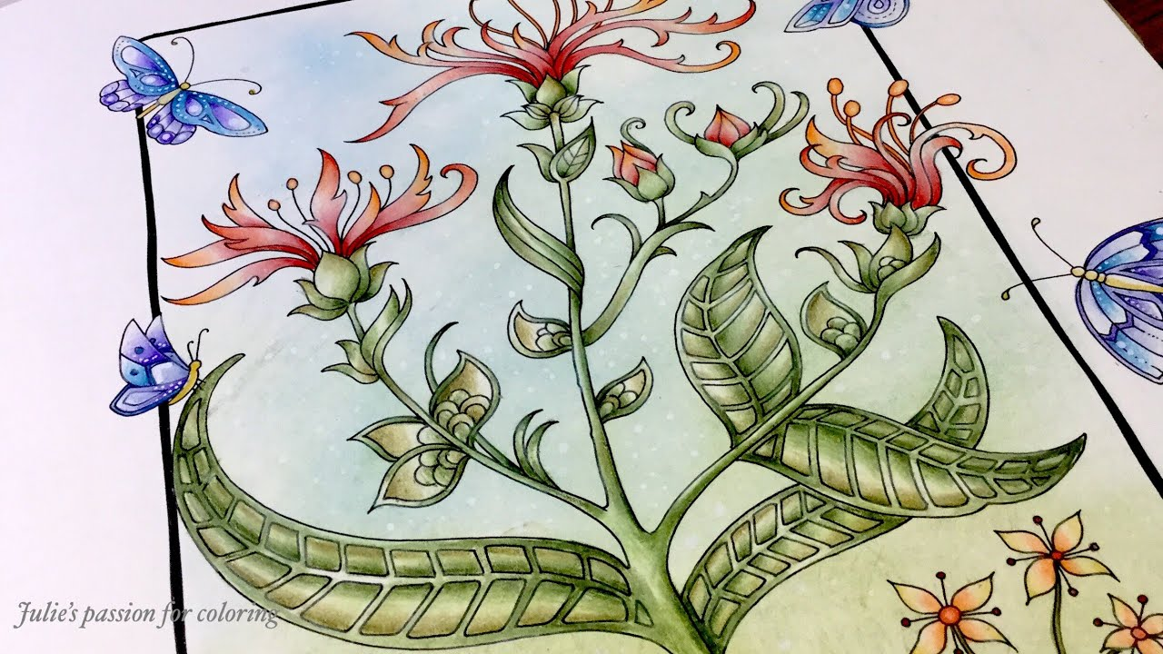 World Of Flowers By Johanna Basford Prismacolor Pencils Color