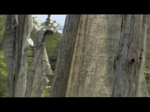 Wild China 3of6 Tibet Full Documentary