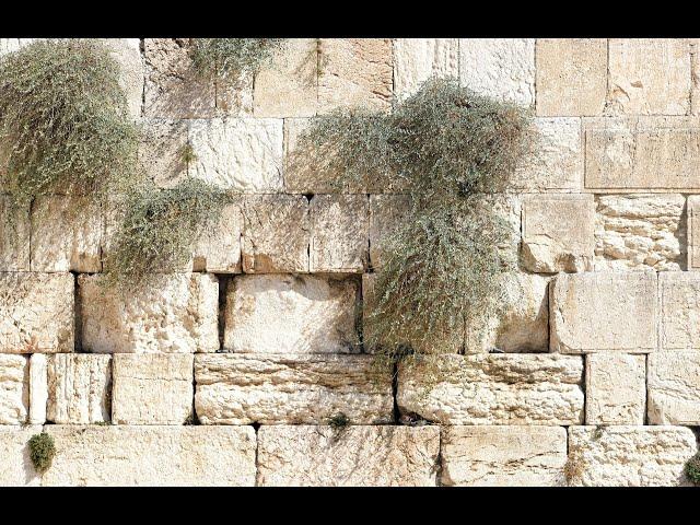 Законы сурини - алахот 9 ава