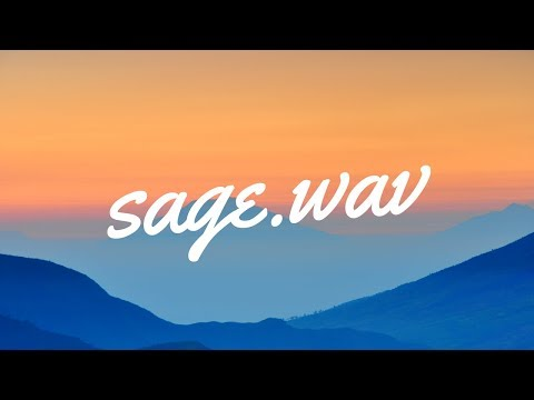 SAGE.WAV Podcast | Episode 1; You've got the music, what now?