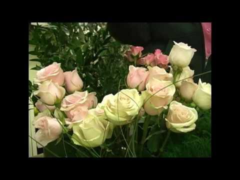 diy-floral---intro---wedding-flowers