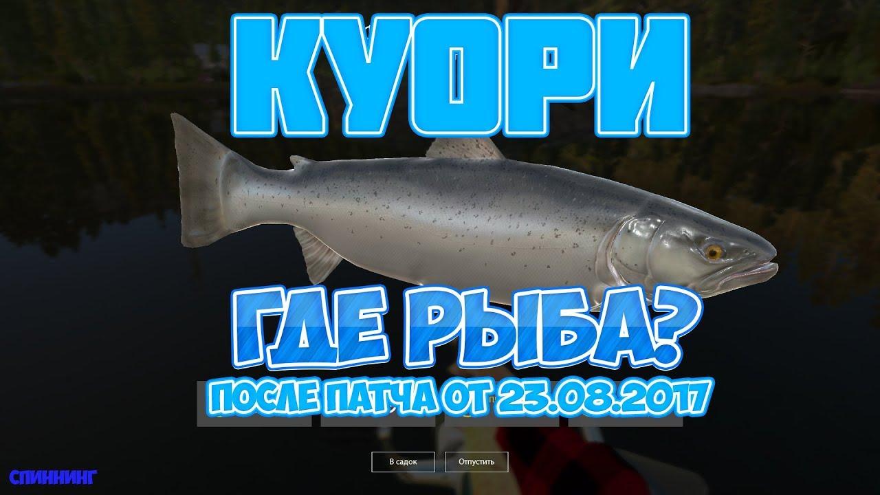 Русская Рыбалка 4 (РР4): ГДЕ РЫБА ПОСЛЕ ПАТЧА от 23.08.2017/