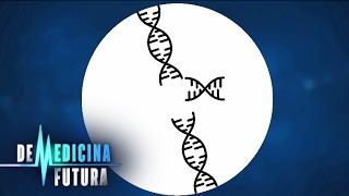 Генетика  Редактирование генома | Медицина будущего