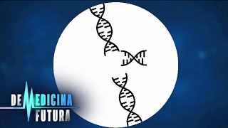 видео Генетика