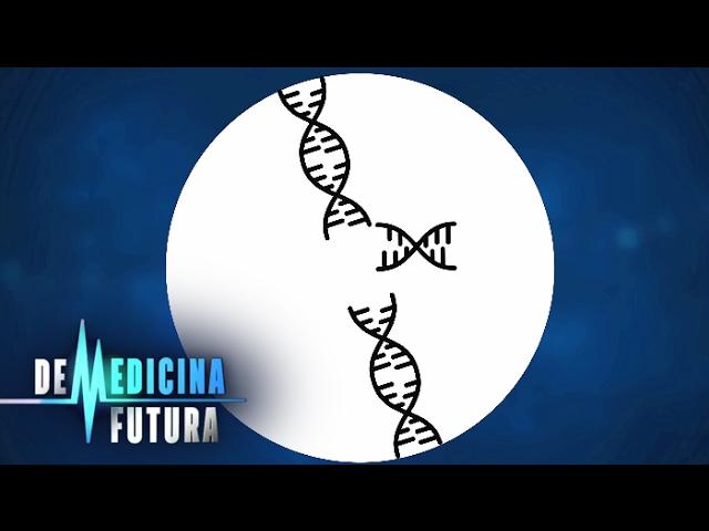 Генетика. Редактирование генома | Медицина будущего