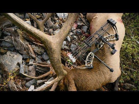 2018 Bear Archery Promo - Public Land Elk Hunt IDAHO