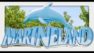 МАЙОРКА #3: Дельфинарий Маринеланд / Marineland - Dolphinarium - Marine Zoo (Mallorca)