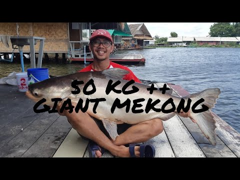 Review New Bungsamran Bangkok - Mekong Madness 2