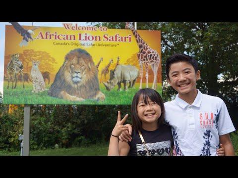 Cora breakfast & African Lion Safari - Vlog 67