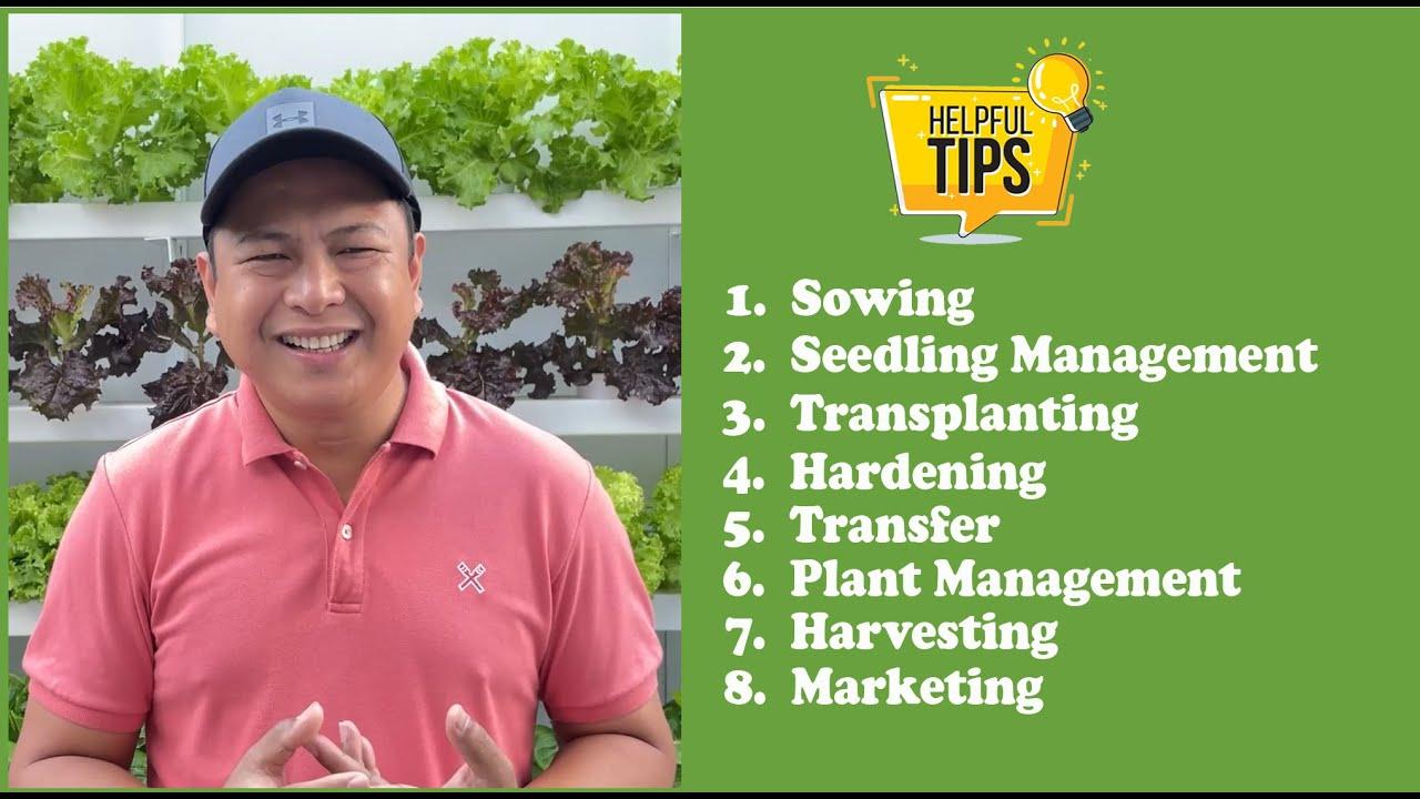 Webinar: Complete Guide to Hydroponic Lettuce Farming