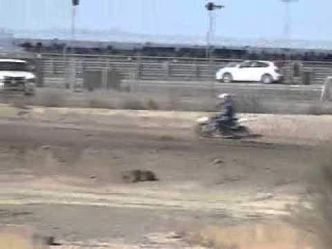 pitsterpro xtr230 play bike vs 450s