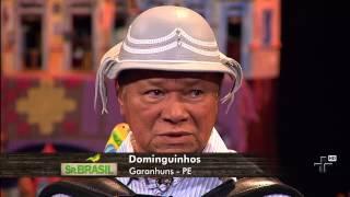 Sanfona Sentida, por Dominguinhos - Sr. Brasil 28/07/2013