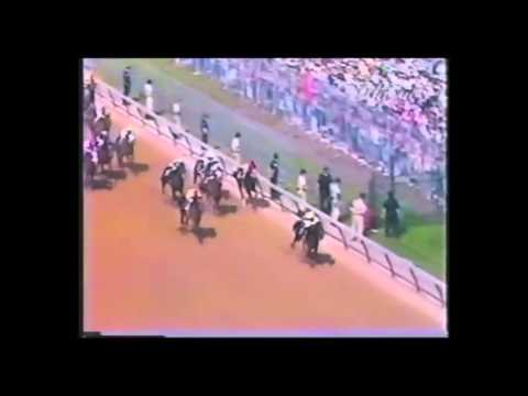 Seattle Slew 1977 Triple Crown Champion
