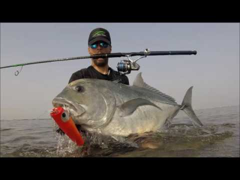 GT Giant Trevally Land Based Popping Crazy Underwater Fight Red Sea