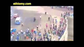 Ox Is Running Towards Crowd of People in Addis Ababa Ethiopia Today Amazing