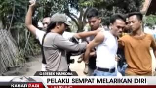 Polisi Tangkap Bandar Narkoba di Gunung Sugih Lampung Tengah