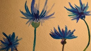 Васильки акварель / Flowers watecolor painting - speed painting