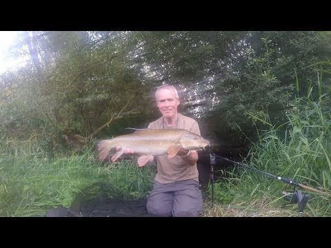 River Lea Barbel Fishing 2019   Small River Approach   Patric Kyte
