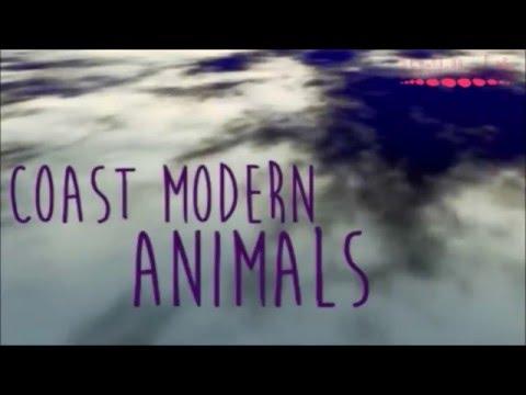 Coast Modern- Animals (LYRICS)